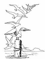 Solo20-Seagulls-copie